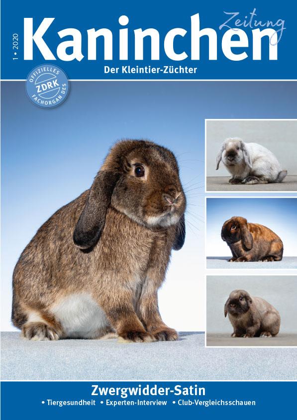Titelbild KaninchenZeitung
